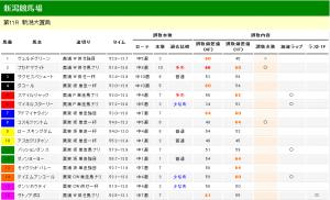 新潟大賞典 2013 調教タイム分析
